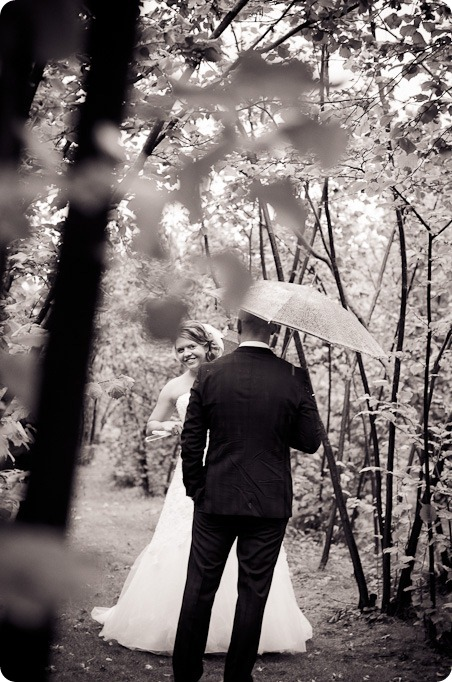 Jen and Don_wedding_Summerhill Winery_Kelowna_photography_vineyard_rain1390_by-Kevin-Trowbridge