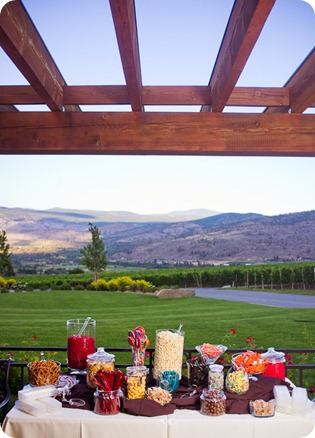 Julia and Dale_wedding_Vaseux-lake_Okanagan_summer_Hester Creek Winery_Oliver0399_by-Kevin-Trowbridge