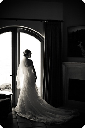 Julia and Dale_wedding_Vaseux-lake_Okanagan_summer_Hester Creek Winery_Oliver2907_by-Kevin-Trowbridge