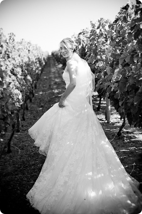 Julia and Dale_wedding_Vaseux-lake_Okanagan_summer_Hester Creek Winery_Oliver3595_by-Kevin-Trowbridge