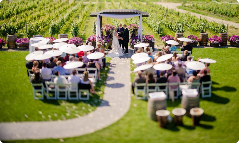 Summerhill-Winery-wedding-Kelowna-vineyards_by-Kevin-Trowbridge-49