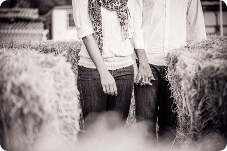Kelowna-fall-autumn-farm-engagement-session-with-horses_2779_by-Kevin-Trowbridge