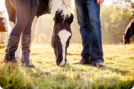 Kelowna-fall-autumn-farm-engagement-session-with-horses_2988_by-Kevin-Trowbridge