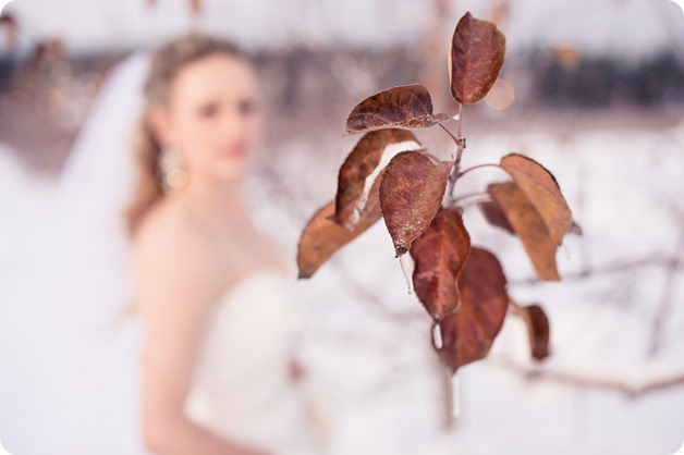 okanagan_winter-wedding_new-year's-eve114_by-Kevin-Trowbridge