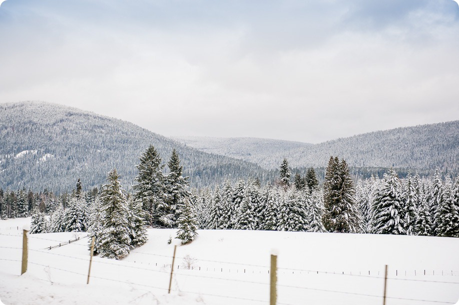 okanagan_winter-wedding_new-year's-eve32_by-Kevin-Trowbridge