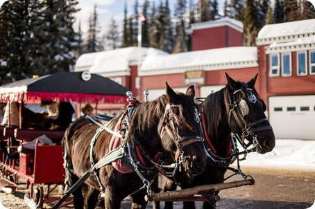 Silverstar-winter-engagement-session_horse-drawn-sleigh58_by-Kevin-Trowbridge