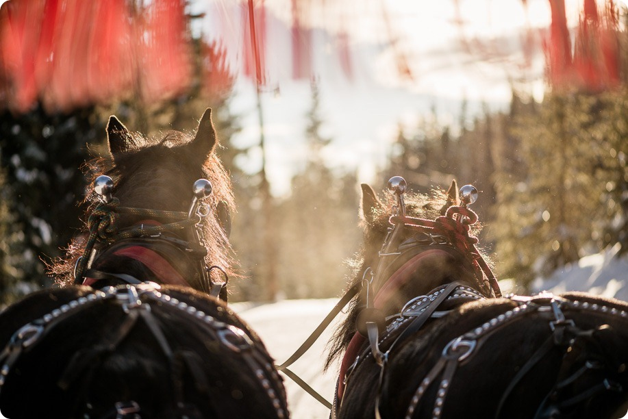 Silverstar-winter-engagement-session_horse-drawn-sleigh67_by-Kevin-Trowbridge