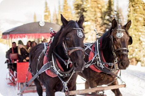 Silverstar-winter-engagement-session_horse-drawn-sleigh69_by-Kevin-Trowbridge