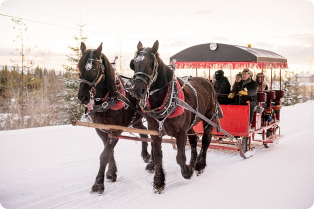 Silverstar-winter-engagement-session_horse-drawn-sleigh87_by-Kevin-Trowbridge