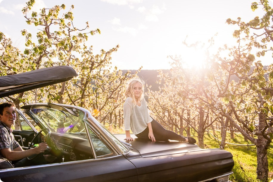convertible-Cadillac_engagement-portraits_travel-cherry-orchard_Okanagan_93_by-Kevin-Trowbridge