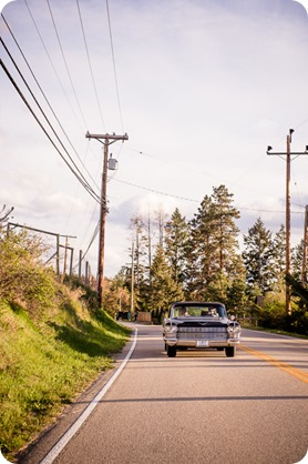 convertible-Cadillac_engagement-portraits_travel-cherry-orchard_Okanagan_97_by-Kevin-Trowbridge