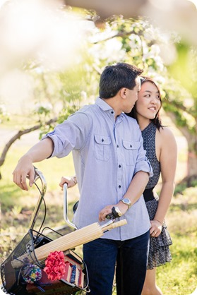 tandem-bike_engagement-portraits_apple-orchard_Kelowna_18_by-Kevin-Trowbridge