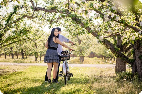 tandem-bike_engagement-portraits_apple-orchard_Kelowna_25_by-Kevin-Trowbridge