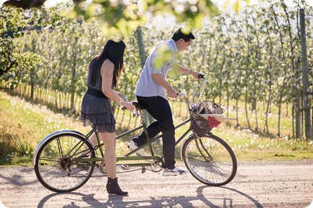tandem-bike_engagement-portraits_apple-orchard_Kelowna_26_by-Kevin-Trowbridge