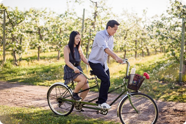 tandem-bike_engagement-portraits_apple-orchard_Kelowna_39_by-Kevin-Trowbridge