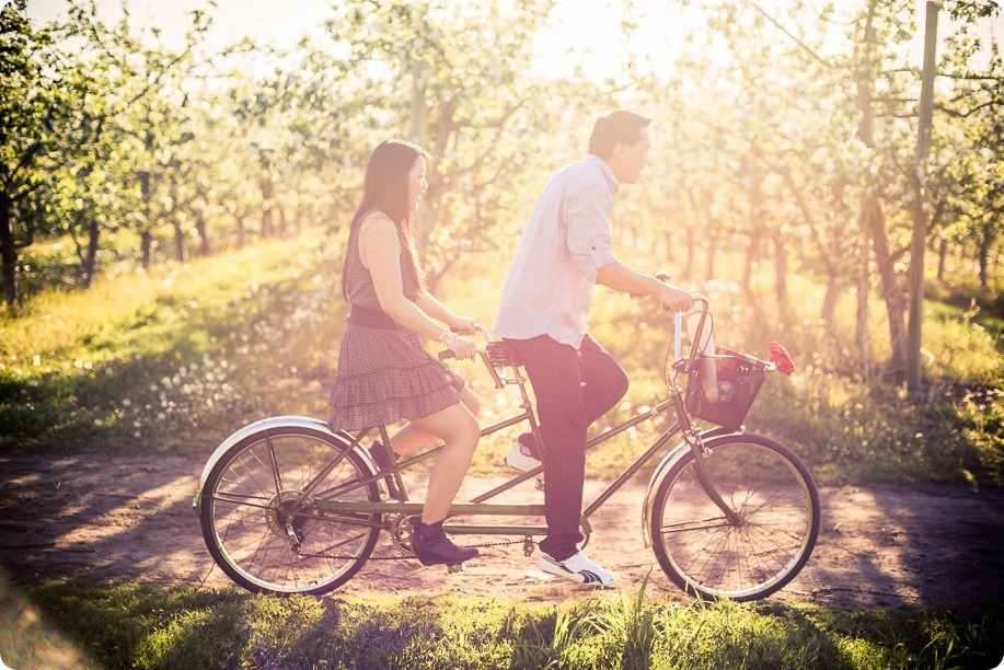tandem-bike_engagement-portraits_apple-orchard_Kelowna_40_by-Kevin-Trowbridge