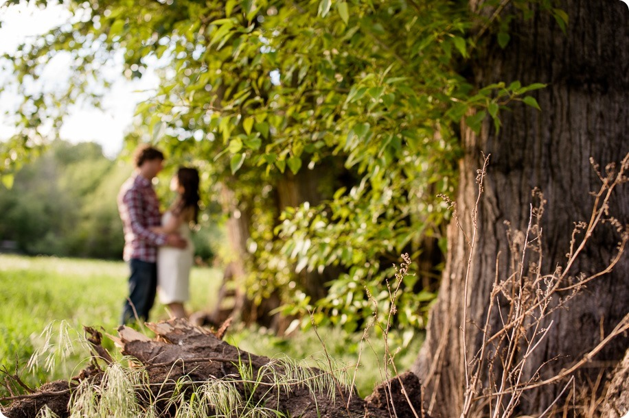 Kelowna-vintage-truck-engagement-session_heritage-orchard-photos71_by-Kevin-Trowbridge