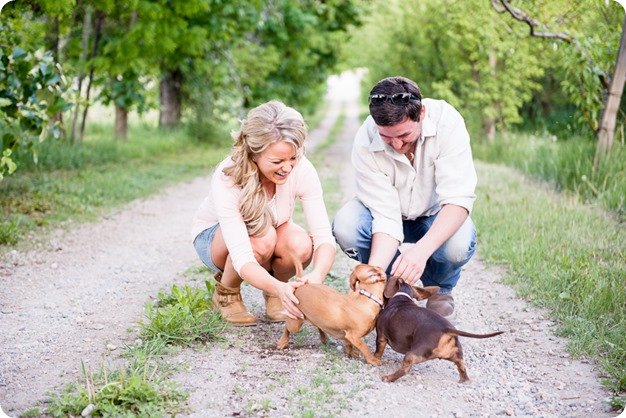 farm-engagement-session_dachshund-dogs_Okanagan_15_by-Kevin-Trowbridge