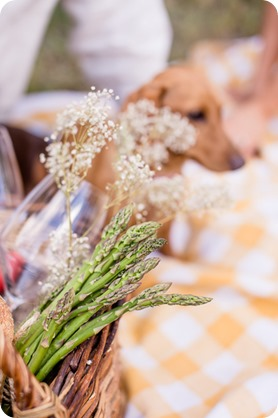 farm-engagement-session_dachshund-dogs_Okanagan_45_by-Kevin-Trowbridge