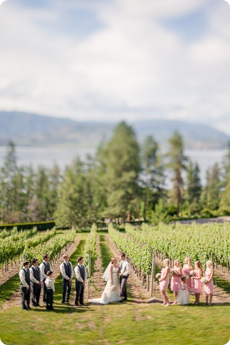 Kelowna-wedding_Cedar-Creek-winery_Laurel_118_by-Kevin-Trowbridge