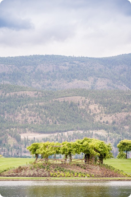 Kelowna-wedding_Cedar-Creek-winery_Laurel_42_by-Kevin-Trowbridge