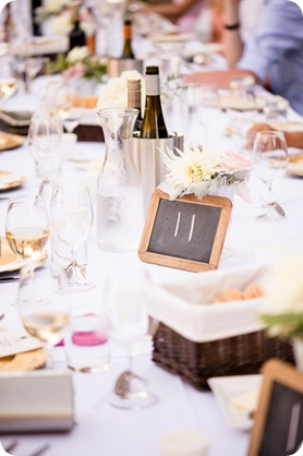 Naramata-wedding-photography_Apple-DOr_vineyard_179_by-Kevin-Trowbridge