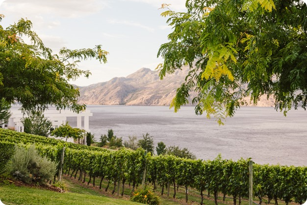 Summerland-wedding_Bonitas-Winery_lake-portraits_124_by-Kevin-Trowbridge
