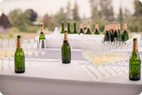 Summerhill-Winery_wedding-photorgaphy-Kelowna_173_by-Kevin-Trowbridge