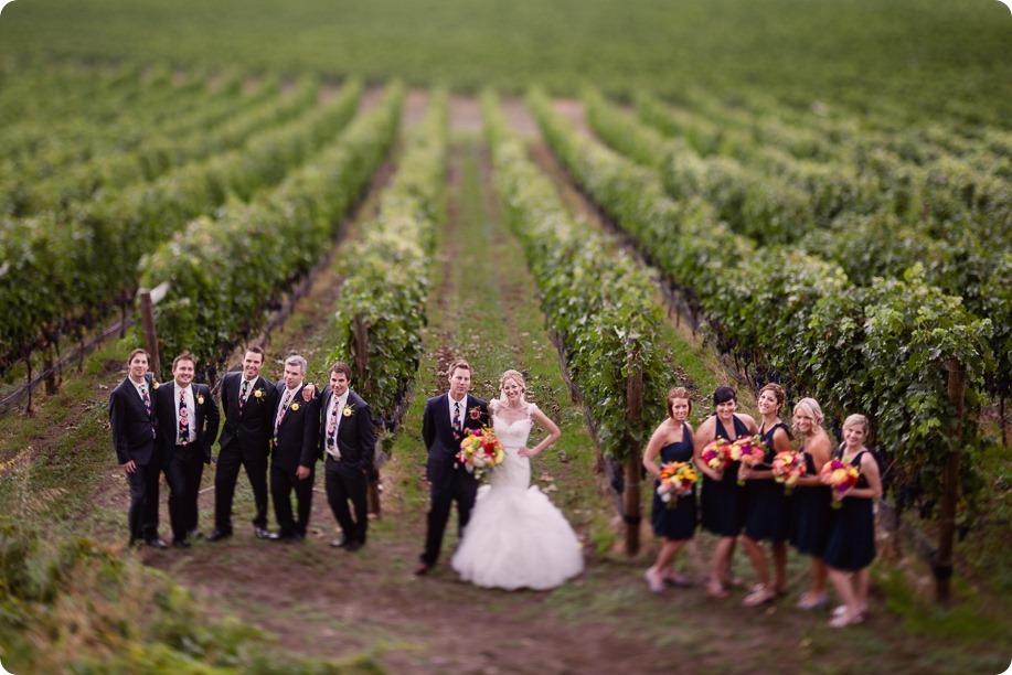 Kaleden-wedding_Linden-Gardens_vineyards-Okanagan-photographer_144739_by-Kevin-Trowbridge