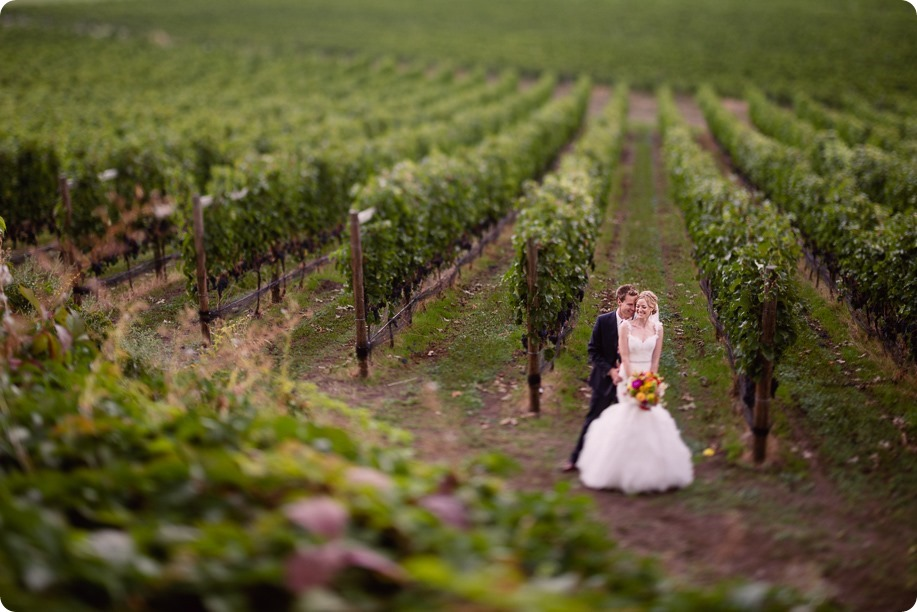 Kaleden-wedding_Linden-Gardens_vineyards-Okanagan-photographer_144916_by-Kevin-Trowbridge