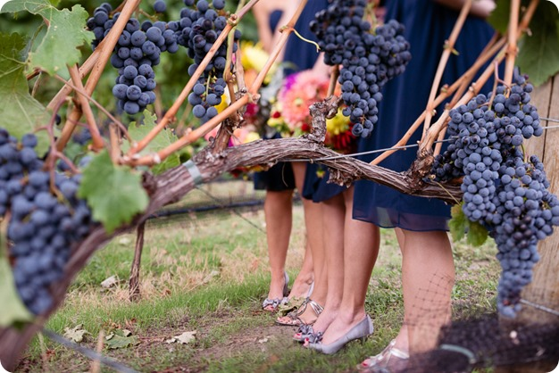 Kaleden-wedding_Linden-Gardens_vineyards-Okanagan-photographer_145319_by-Kevin-Trowbridge