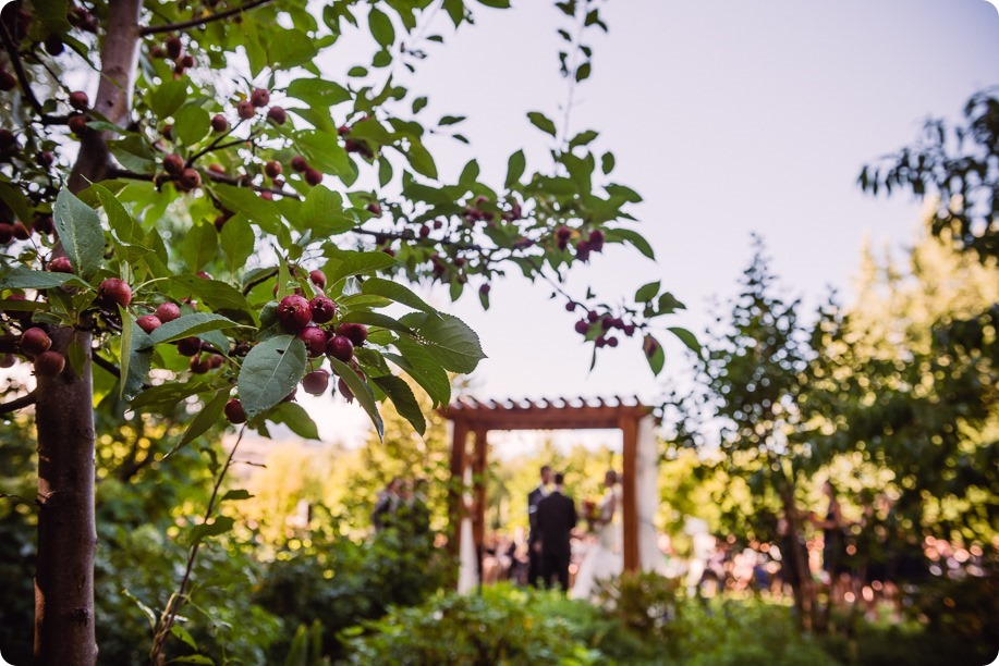 Kaleden-wedding_Linden-Gardens_vineyards-Okanagan-photographer_161959_by-Kevin-Trowbridge