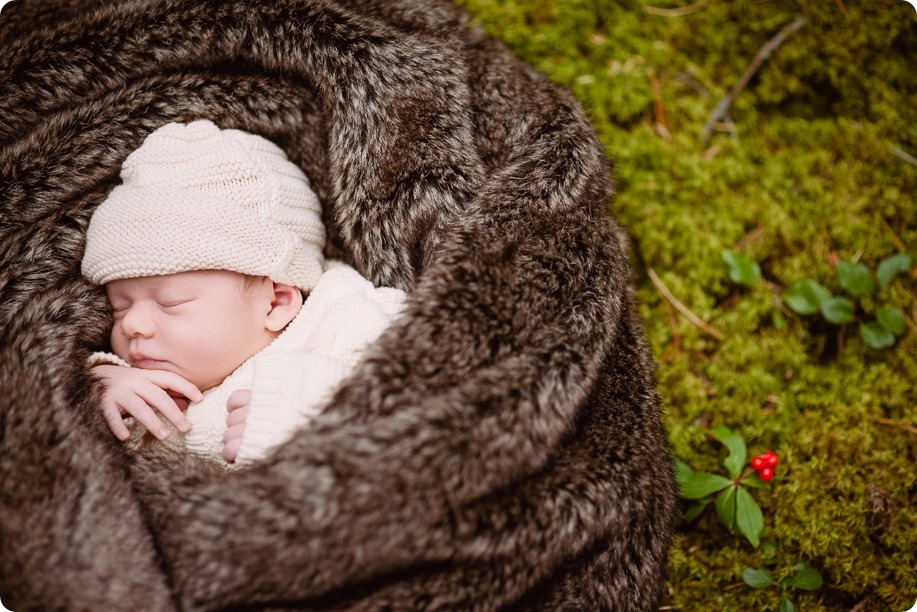Banff-portraits_moss-forest_Fairmont-bohemian-family-session-newborn_45_by-Kevin-Trowbridge
