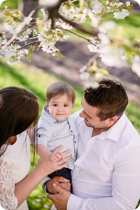 Cake-Smash_portrait-session-in-cherry-blossom-orchard_Kelowna_08_by-Kevin-Trowbridge