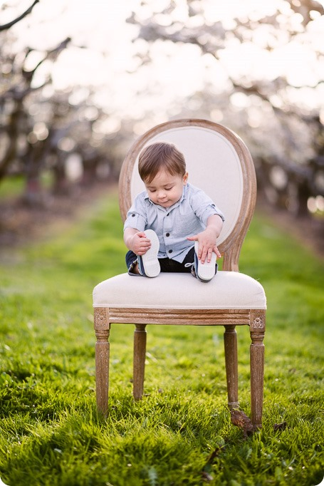 Cake-Smash_portrait-session-in-cherry-blossom-orchard_Kelowna_46_by-Kevin-Trowbridge