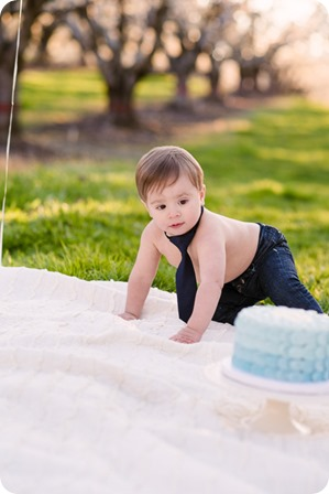 Cake-Smash_portrait-session-in-cherry-blossom-orchard_Kelowna_74_by-Kevin-Trowbridge