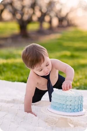 Cake-Smash_portrait-session-in-cherry-blossom-orchard_Kelowna_75_by-Kevin-Trowbridge