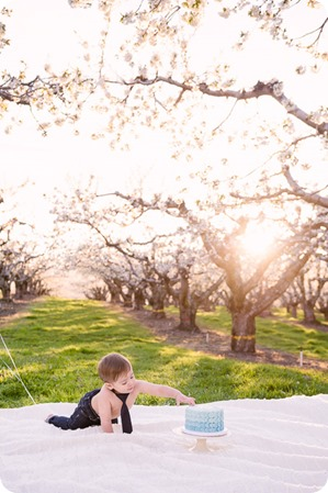 Cake-Smash_portrait-session-in-cherry-blossom-orchard_Kelowna_77_by-Kevin-Trowbridge