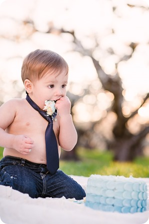 Cake-Smash_portrait-session-in-cherry-blossom-orchard_Kelowna_92_by-Kevin-Trowbridge