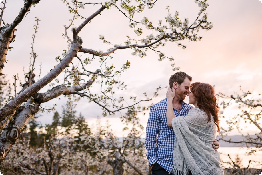 Kelowna-wedding-photographer_cherry-blossom-engagement-session_sunset-couples-portraits_tandem-bike__86154_by-Kevin-Trowbridge