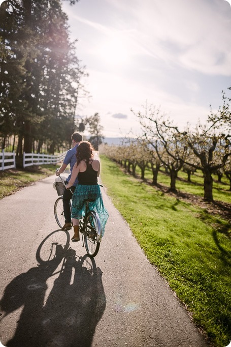 Kelowna-wedding-photographer_cherry-blossom-engagement-session_sunset-couples-portraits_tandem-bike__85415_by-Kevin-Trowbridge