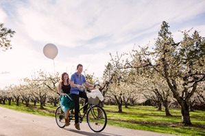 Orchard Blossom Engagement Session In Kelowna Bc Renee Amp Adam Okanagan Wedding Photographer