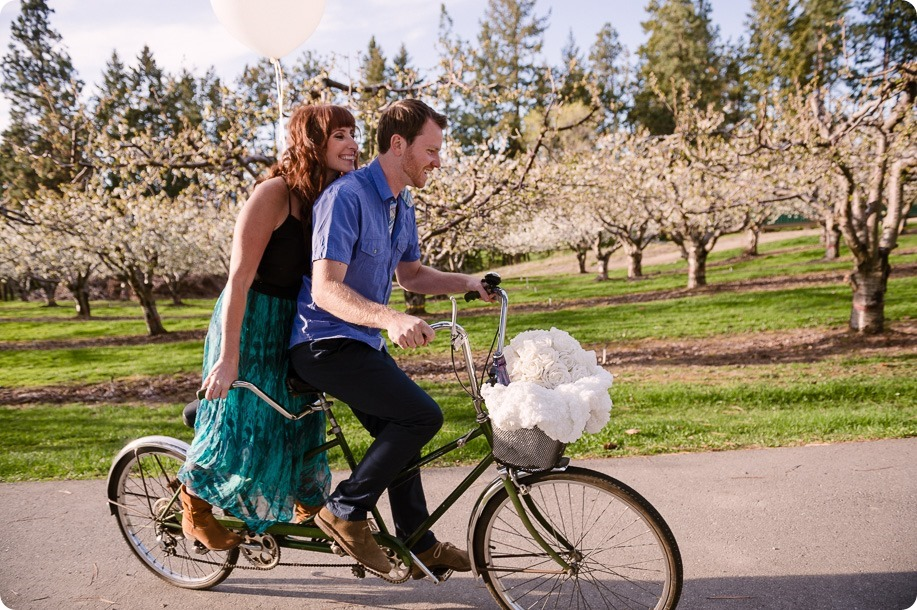 Kelowna-wedding-photographer_cherry-blossom-engagement-session_sunset-couples-portraits_tandem-bike__40266_by-Kevin-Trowbridge
