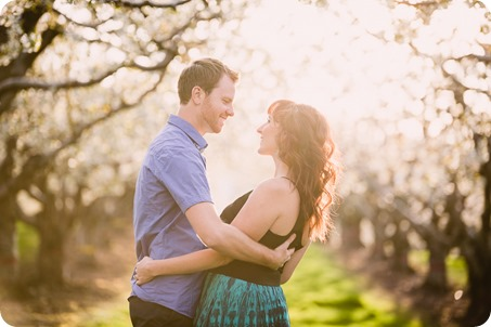 Kelowna-wedding-photographer_cherry-blossom-engagement-session_sunset-couples-portraits_tandem-bike__85757_by-Kevin-Trowbridge