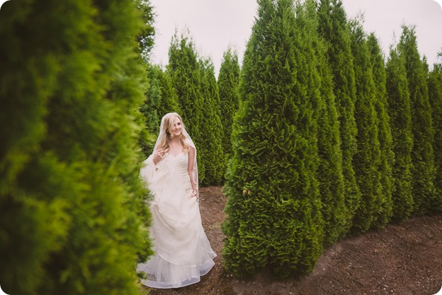 Summerhill-Winery-wedding_Okanagan-Lavender-Farm-first-look_Kelowna_49_by-Kevin-Trowbridge-photography_Kelowna