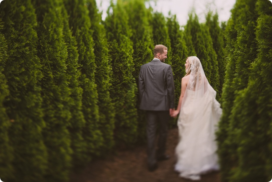 Summerhill-Winery-wedding_Okanagan-Lavender-Farm-first-look_Kelowna_68_by-Kevin-Trowbridge-photography_Kelowna