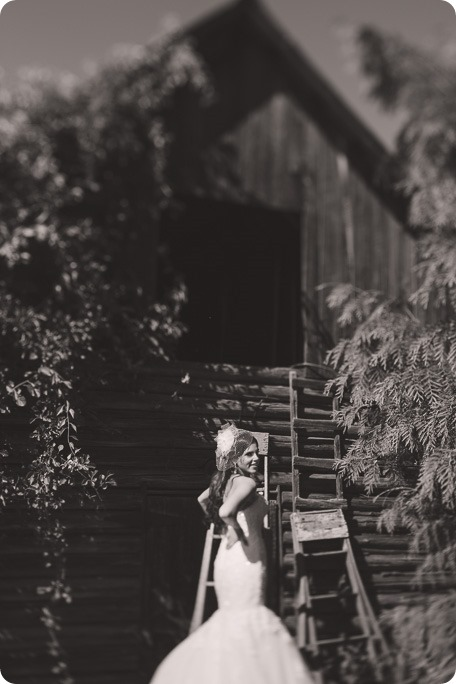 Enderby-wedding_orchard-bridge-sparklers_Okanagan_154835_by-Kevin-Trowbridge-2