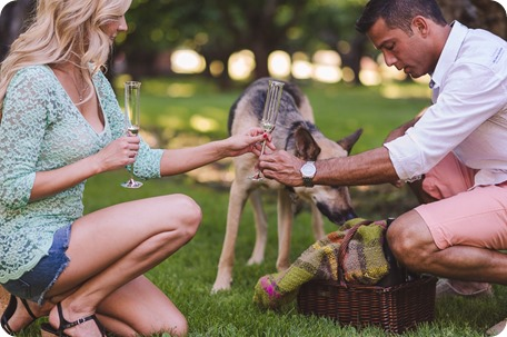 Kelowna-wedding-photographer_Cherry-orchard-engagement_dog-sunset-champagne_191457_by-Kevin-Trowbridge