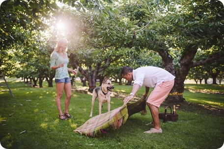 Kelowna-wedding-photographer_Cherry-orchard-engagement_dog-sunset-champagne_191545_by-Kevin-Trowbridge