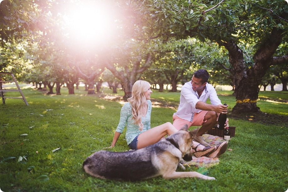 Kelowna-wedding-photographer_Cherry-orchard-engagement_dog-sunset-champagne_192405_by-Kevin-Trowbridge
